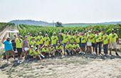 Istrischer Malvazija als europäischer   Weinbotschafter der JRE-Spitzenköche