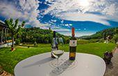 Weingut Kozlović – schräge Gourmetideen  und ein Malvazija der Extraklasse