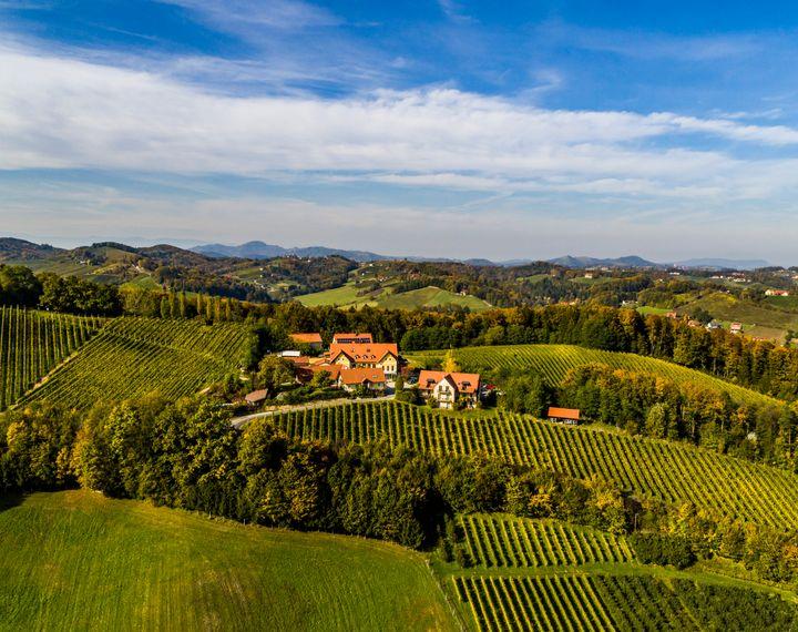 Genießerhote und Weingut Sattlerhof