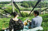 Picknick im Weingarten und ein Wein-Hideaway zum Verlieben
