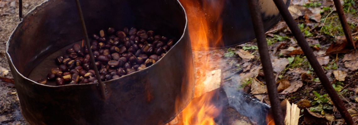 Kvarner – Kastanien aus dem Feuer holen