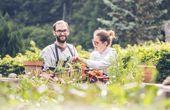 Mittelkärnten – Feine Wirtshauskultur mit innovativer Bodenhaftung
