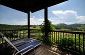 Wohnen beim Top-Winzer: Österreichs schönste Weinhotels